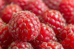 Juicy raspberries Royalty Free Stock Photography