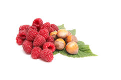 Juicy raspberries and nuts on a white. Royalty Free Stock Photos