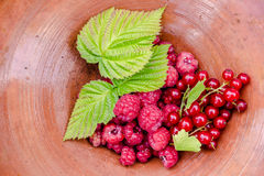 Juicy raspberries and red currants lying in a bowl with leaves. Juicy raspberries and red currants lying in a bowl with three green leaves Royalty Free Stock Images