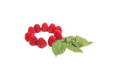 Juicy raspberries on a white. Stock Images