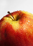 juicy red apple with drops close-up Royalty Free Stock Photography