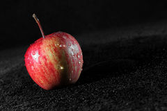 Juicy red apple Royalty Free Stock Photo