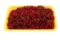 Juicy red currant in the yellow plastic tray Stock Photo