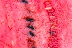 Juicy red flesh of a watermelon with seeds. Macro photo taken at close range with bokeh effect royalty free stock images