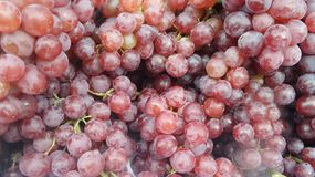 Fresh juicy red grape. Grapes are handy , succulent and tasty fruit. It may also help lower cholesterol , prevent blood clots , cure migraines and delay the royalty free stock images