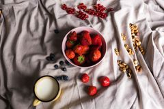 A juicy red strawberry in a pink porcelain plate is on a draped fabric surrounded by blueberries, red currants, nuts and. A vintage cup filled with milk Royalty Free Stock Image