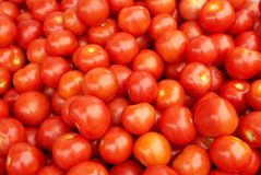 Juicy red tomatoes. A pile of ripened juicy tomatoes Royalty Free Stock Photo
