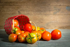 Juicy red tomatoes Royalty Free Stock Photography