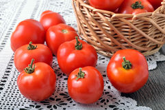 Juicy red tomatoes Stock Photos