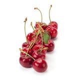 Juicy ripe cherries Royalty Free Stock Photo