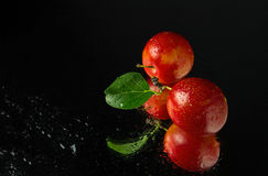 Juicy and ripe cherry plum fruit. S on a dark background Royalty Free Stock Photos