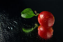 Juicy and ripe cherry plum fruit. S on a dark background Stock Photo