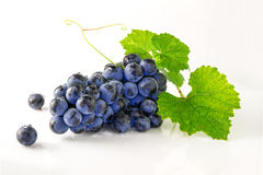 Juicy ripe and delicious grapes. On a white background Royalty Free Stock Photo