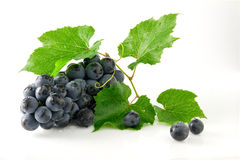 Juicy ripe and delicious grapes. On a white background Royalty Free Stock Photography