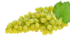 Juicy ripe grapes Royalty Free Stock Photography