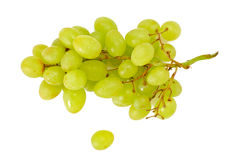 Juicy Ripe Grapes Isolated on White Background Royalty Free Stock Photography