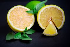 Ripe and juicy lime and lemon with a sprig of mint on a dark tab stock photography