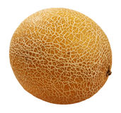 Juicy ripe melon isolated royalty free stock photos