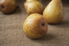 Juicy ripe pear close-up, against the background of burlap, sack Royalty Free Stock Photography