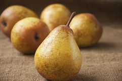 Juicy ripe pear close-up, against the background of burlap, sack Royalty Free Stock Photos