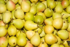 Juicy ripe pears at local fruit market bazaar royalty free stock images
