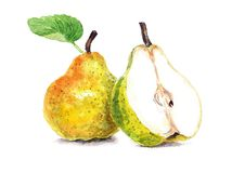 Juicy, ripe pears. Still-life of two subjects. Illustration made in aquaplaning technique. Two yellow pears on a white background. One pear in a cut Stock Photography