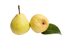 Juicy,ripe  pears on a white. Royalty Free Stock Photo