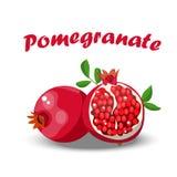Juicy ripe pomegranate Royalty Free Stock Image