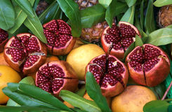 Juicy ripe pomegranates on the foliage Stock Image