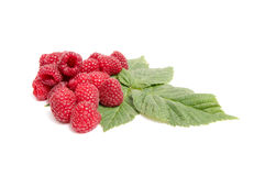 Juicy,ripe raspberries on a white. Stock Image