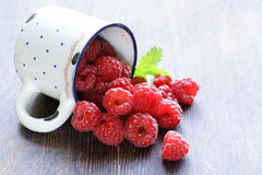 Juicy ripe red berry raspberries Stock Photography