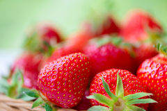 Juicy ripe strawberries in basket Stock Photography
