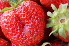 Juicy, ripe strawberries in a bowl Royalty Free Stock Image
