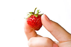 Juicy ripe strawberry Royalty Free Stock Photography