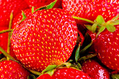 Juicy ripe strawberry closeup Stock Photos