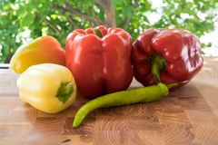 Juicy salad peppers royalty free stock images