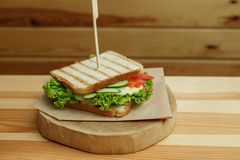 Juicy sandwich with bacon, fresh vegetables, green salad and dark lines after grill on wooden plate.  stock photos