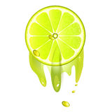 Juicy slice of lemon fruit. Isolated on white background royalty free illustration