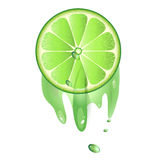 Juicy slice of lime fruit. Isolated on white background stock illustration