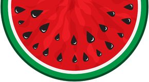 Juicy slice of red watermelon on white background. Concept of Hello Summer. Fruit vector. Watermelon icon. Juicy slice of red watermelon on white background vector illustration