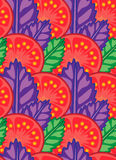 Juicy slice of tomato with leaves of green and purple basil vector illustration Royalty Free Stock Images