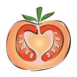 Juicy slice of tomato. Vector illustration, isolated on white. Stock Images