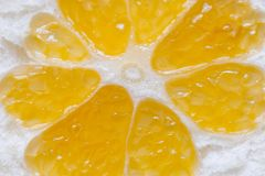 Juicy slice of a wild orange stock images