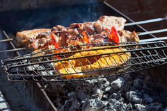 Juicy slices of meat and fish  prepare on fire. Stock Photo