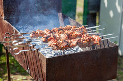 Juicy slices of meat prepare on coals Royalty Free Stock Images