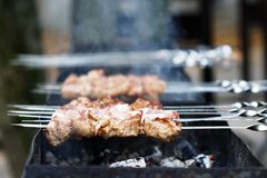 Juicy slices of meat with sauce prepare on fire. (shish kebab stock image