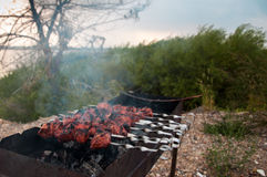 The juicy slices of meat with sauce prepare on fire outdoors (shish kebab). Juicy slices of meat with sauce prepare on fire outdoors (shish kebab royalty free stock photos