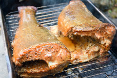 Juicy smoked pike with lemon pepper,sugar,seal salt and butter. royalty free stock photo