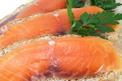Juicy snack from slices salmon. Juicy snack from slices salty salmon and crispbread Stock Photos