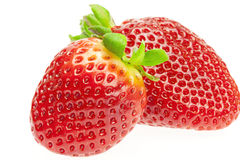 Juicy strawberries Royalty Free Stock Photos